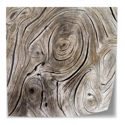 Adesivo da tavolo Struttura ad albero 2