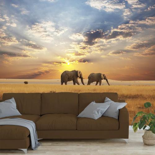Wallpaper Elephant on a stroll 2