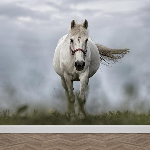 Carta da parati Cavallo bianco