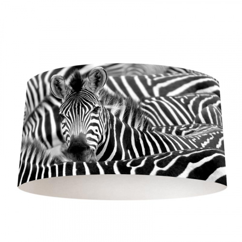 Paralume Zebra