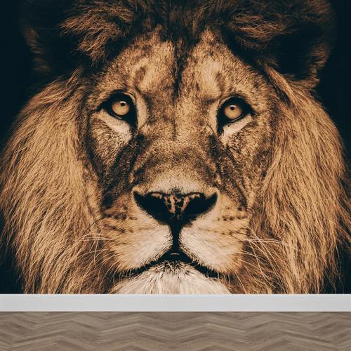 Carta da parati Testa di leone