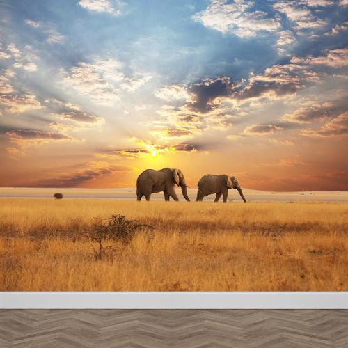 Fotobehang olifanten aan de wandel