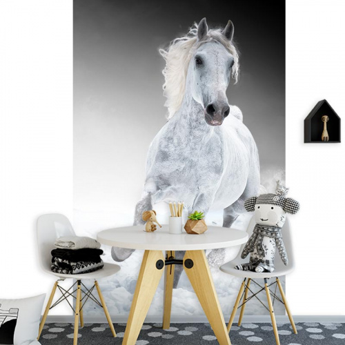 Fotobehang rennend paard wit
