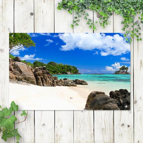 Poster da giardino Vista tropicale