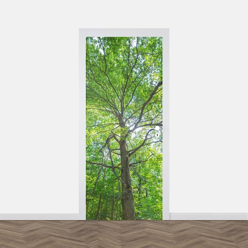 Adesivo per porte Albero a foglie verdi