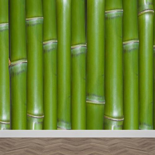 Carta da parati Bambù