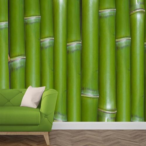 Carta da parati Bambù 2