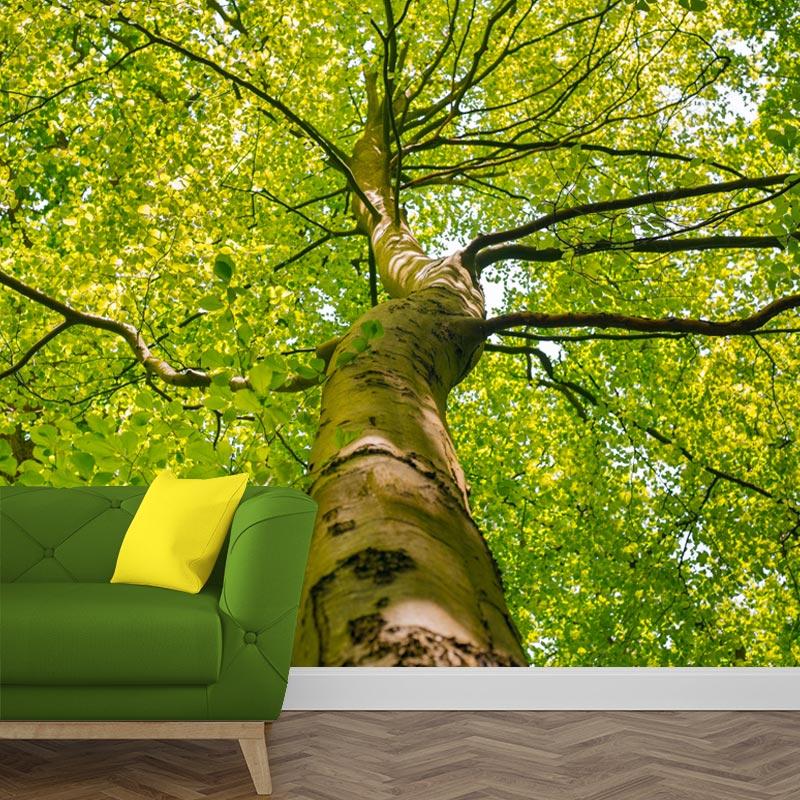 Fotobehang lenteboom 1