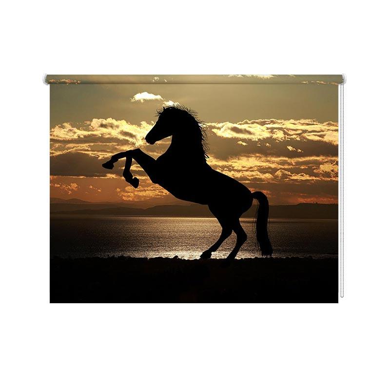 Rolgordijn paard in avondzon