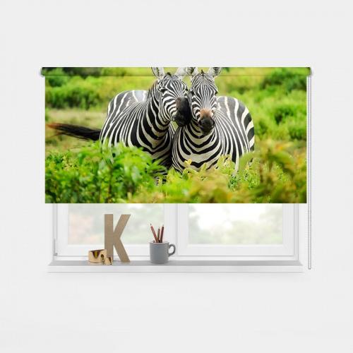 Rolgordijn Knuffelende zebra's 2