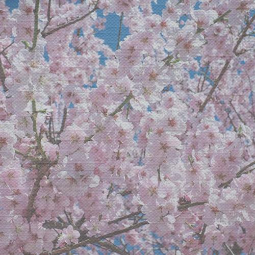 Tovaglia Fiori di primavera