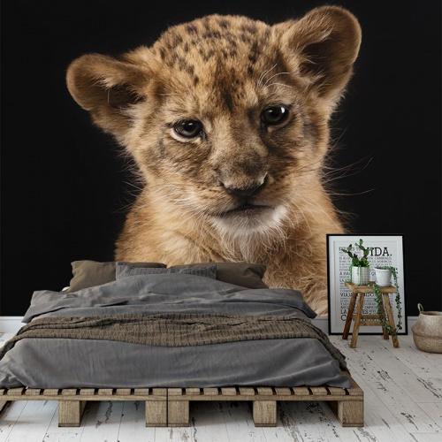 Carta da parati Piccolo leone vicino