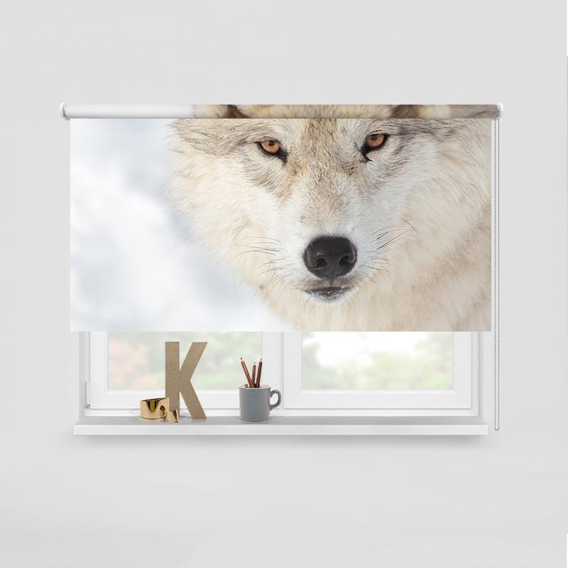 Rolgordijn Wolf close-up