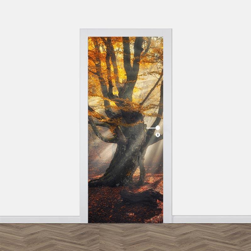 Adesivo per porta sole nella foresta d'autunno