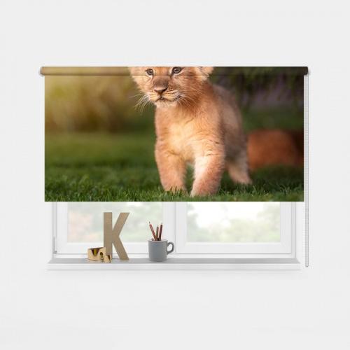 Rolgordijn Leeuwtje in het gras