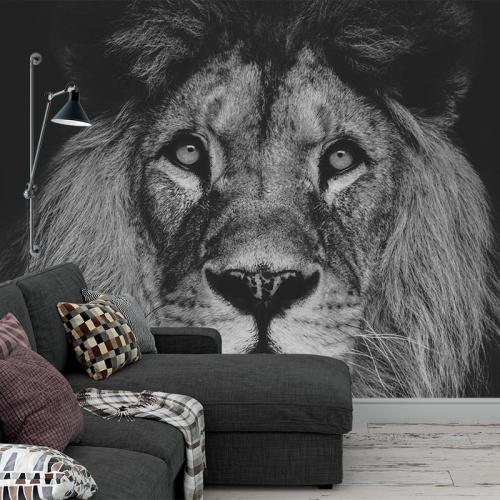 Fotobehang Leeuwenkop zwartwit