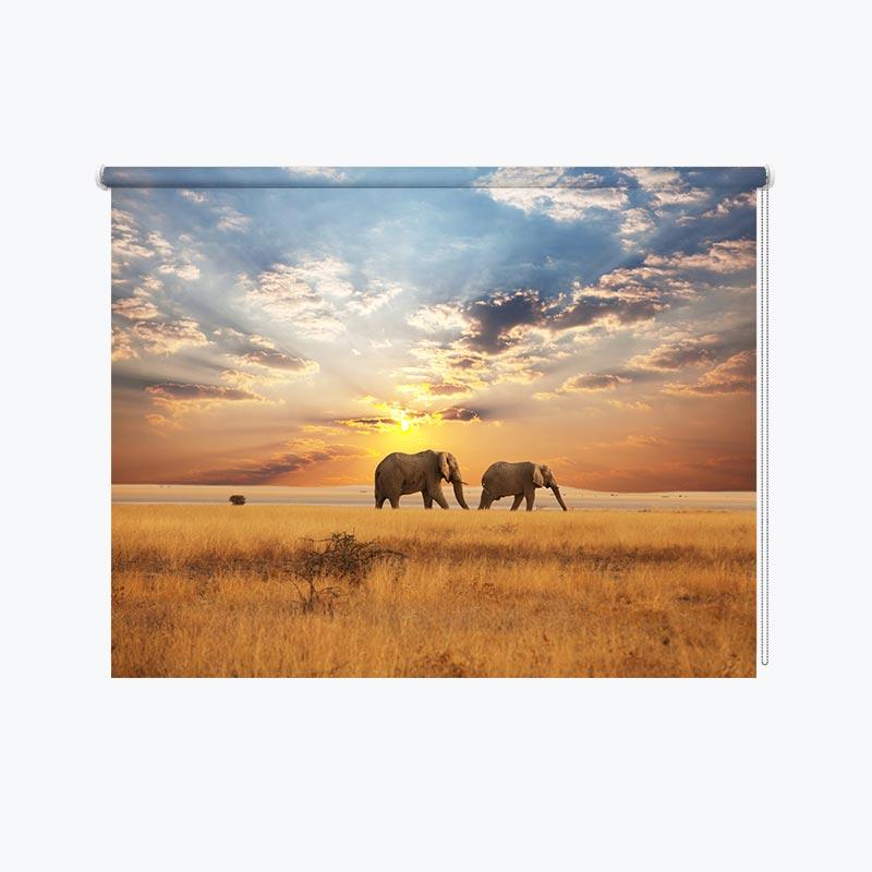 Tenda a rullo Elefanti in una passeggiata