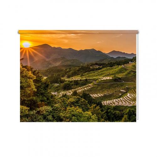Rolgordijn Rijstplantage