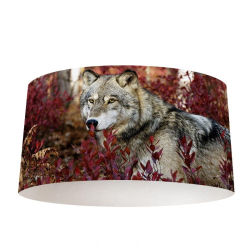 Lampenkap Herfstachtige wolf
