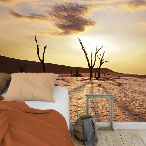 Fotobehang Woestijnlandschap