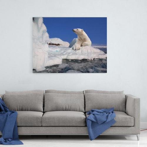 Tela Orso polare sul ghiaccio