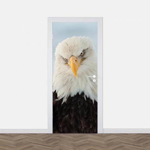 Adesivo per porta Aquila da vicino