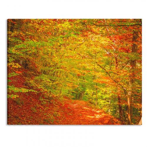 Canvas Bospaadje in herfstkleuren