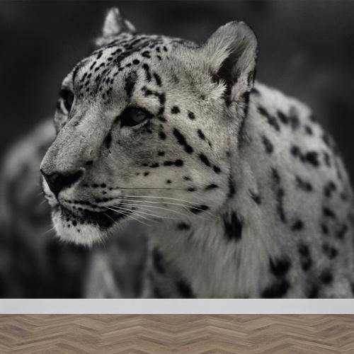 Carta da parati Leopardo blackandwhite