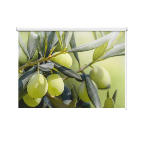 Tenda a rullo Olive