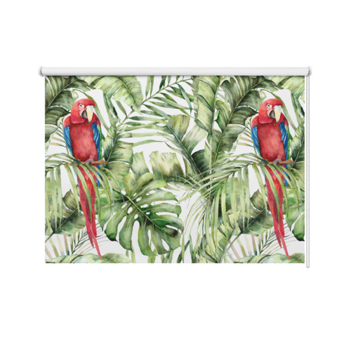 Tenda a rullo Due pappagalli
