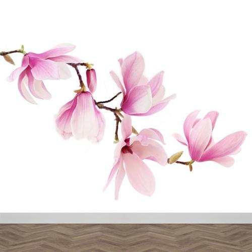 Carta da parati Ramo di magnolia
