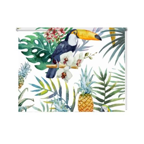 Tucani e ananas